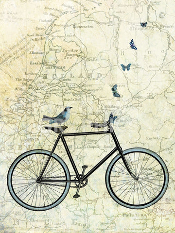 Bike Country -  Marion McConaghie - McGaw Graphics