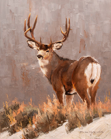 Muley Ridge -  Mark McKenna - McGaw Graphics