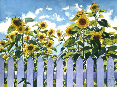 Sunflowers with Picket Fence