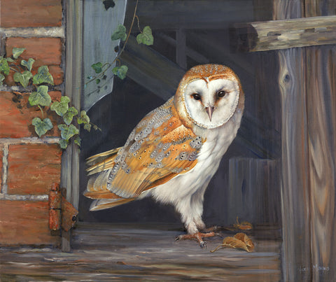 Barn Owl in the Barn -  Hilary Mayes - McGaw Graphics