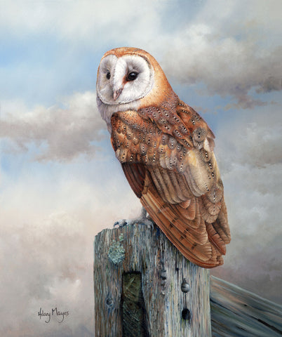 Barn Owl on a Post -  Hilary Mayes - McGaw Graphics
