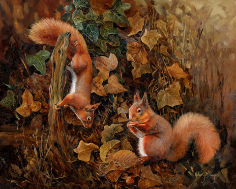 Squirrels -  Hilary Mayes - McGaw Graphics