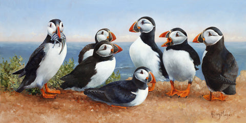 Puffins -  Hilary Mayes - McGaw Graphics