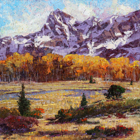Rocky Mountain Meadow -  Robert Moore - McGaw Graphics