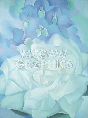 White Rose with Larkspur No. 2, 1927 -  Georgia O'Keeffe - McGaw Graphics