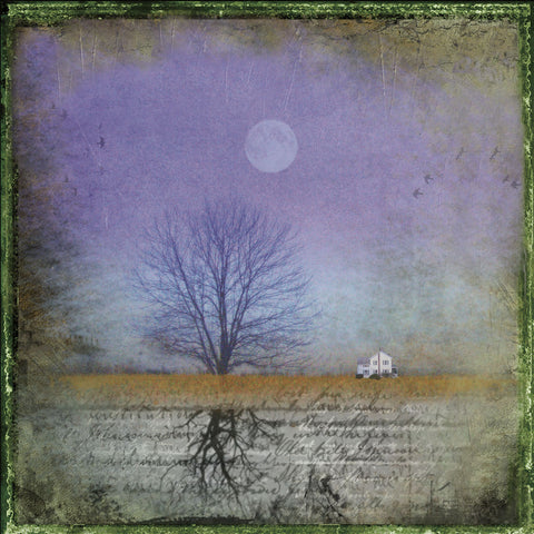 Moonlight in Vermont -  Dawne Polis - McGaw Graphics