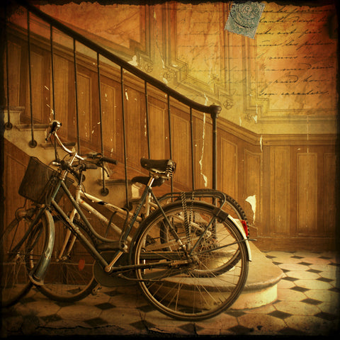 Bikes in Paris, France -  Dawne Polis - McGaw Graphics