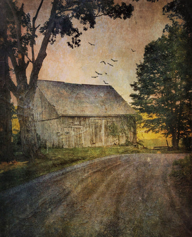 Dawne Polis - White Creek Barn