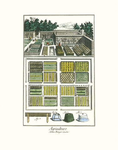 Garden II -  Vintage Reproduction - McGaw Graphics