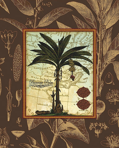 Banana Palm (Brown) -  Karl Rattner - McGaw Graphics