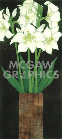 Rachel Rafferty - Perfect White Lilies