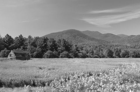Adirondack Field -  Erik Richards - McGaw Graphics