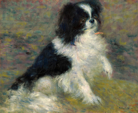 Tama, the Japanese Dog, c. 1876 -  Pierre-Auguste Renoir - McGaw Graphics