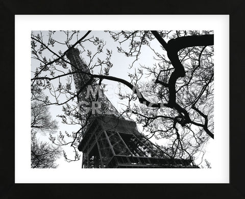 Eiffel III (Framed) -  Tom Artin - McGaw Graphics