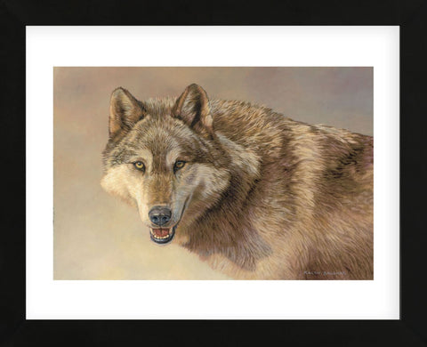 Wolf Portrait  (Framed) -  Kalon Baughan - McGaw Graphics