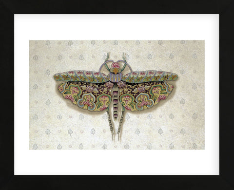 Flight of Fancy II  (Framed) -  Jennette Brice - McGaw Graphics