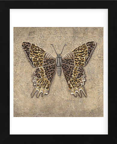 Leopard Butterfly  (Framed) -  Jennette Brice - McGaw Graphics