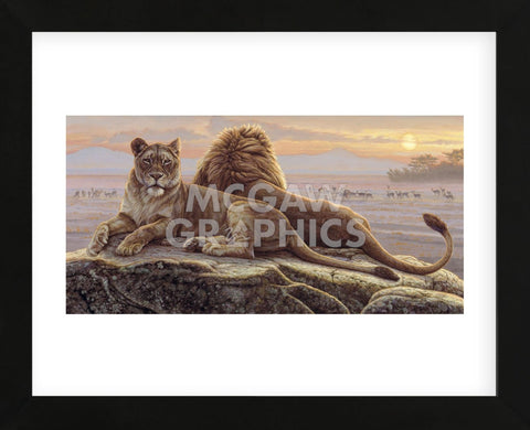Lions of the Mara  (Framed) -  Kalon Baughan - McGaw Graphics