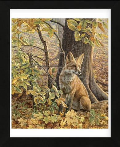 Eyes of Autumn  (Framed) -  Kalon Baughan - McGaw Graphics