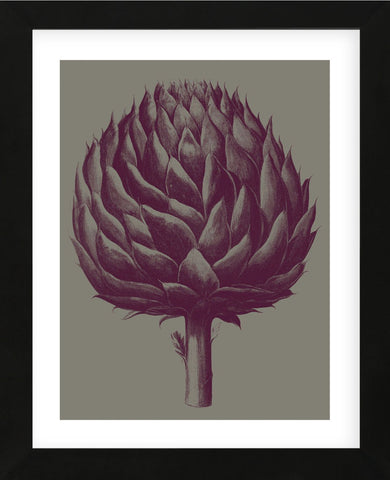 Artichoke (grey-plum) (Framed) -  Botanical Series - McGaw Graphics