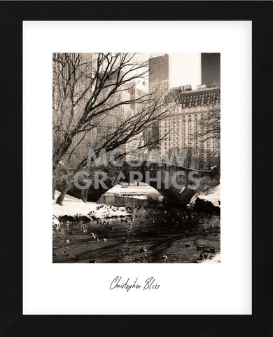 Central Park Bridges 4 (Framed) -  Chris Bliss - McGaw Graphics
