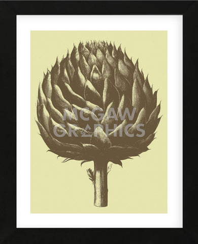 Artichoke 3 (Framed) -  Botanical Series - McGaw Graphics