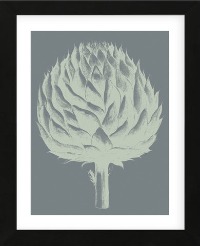 Artichoke 7 (Framed) -  Botanical Series - McGaw Graphics