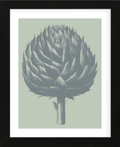 Artichoke 8 (Framed) -  Botanical Series - McGaw Graphics
