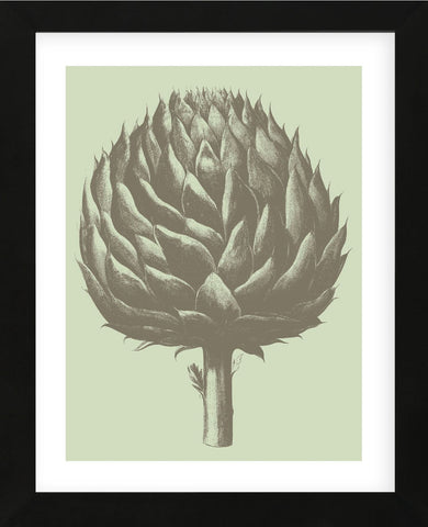 Artichoke 11 (Framed) -  Botanical Series - McGaw Graphics