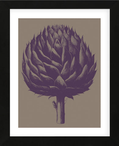 Artichoke 14 (Framed) -  Botanical Series - McGaw Graphics