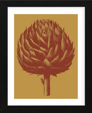 Artichoke 15 (Framed) -  Botanical Series - McGaw Graphics