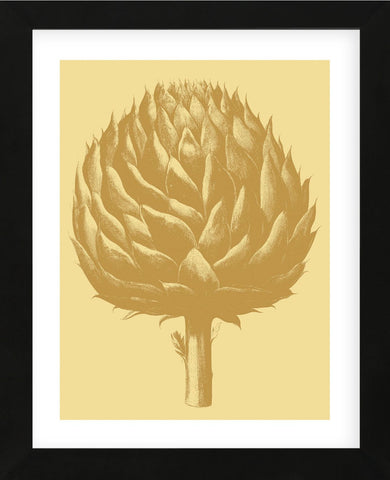 Artichoke 19 (Framed) -  Botanical Series - McGaw Graphics