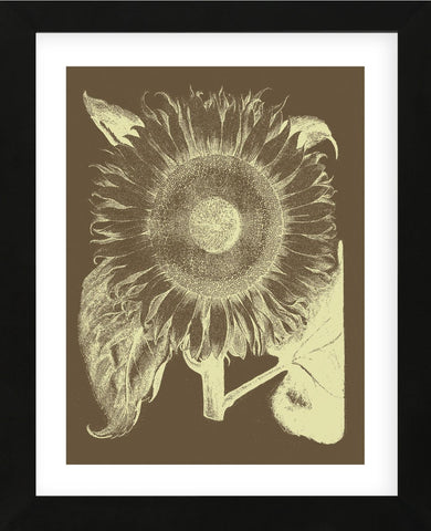 Sunflower 3 (Framed) -  Botanical Series - McGaw Graphics