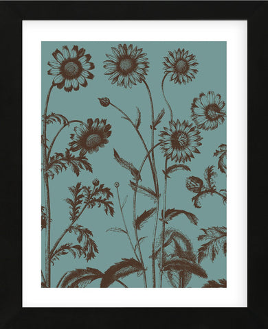Chrysanthemum 5 (Framed) -  Botanical Series - McGaw Graphics
