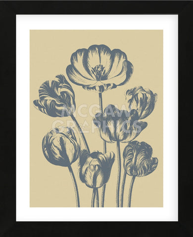 Tulip 1 (Framed) -  Botanical Series - McGaw Graphics