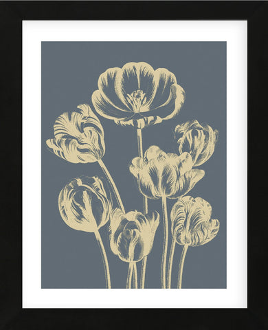 Tulip 2 (Framed) -  Botanical Series - McGaw Graphics