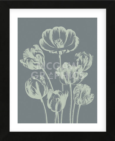 Tulip 7 (Framed) -  Botanical Series - McGaw Graphics