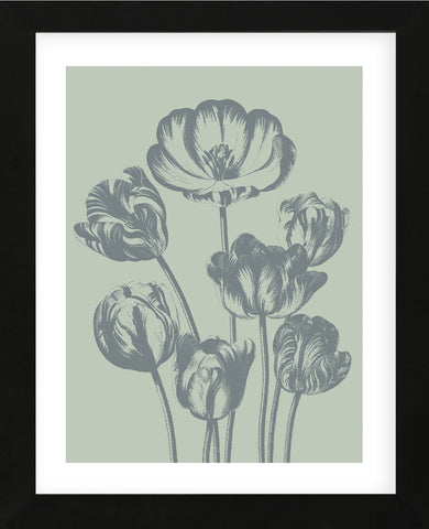Tulip 8 (Framed) -  Botanical Series - McGaw Graphics