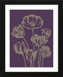 Tulip 13 (Framed) -  Botanical Series - McGaw Graphics