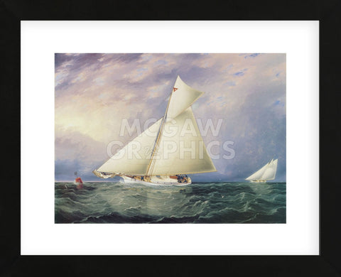 Yacht Race in New York Harbor (Framed) -  James E. Buttersworth - McGaw Graphics