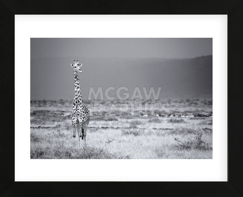 Big Boy (Framed) -  Mark Bridger - McGaw Graphics