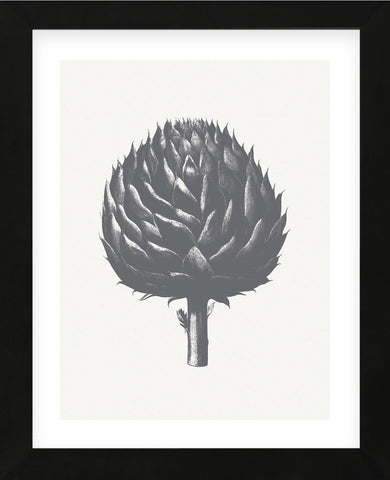 Artichoke (Ivory & Gray) (Framed) -  Botanical Series - McGaw Graphics