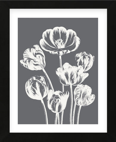 Tulips (Gray & Ivory) (Framed) -  Botanical Series - McGaw Graphics