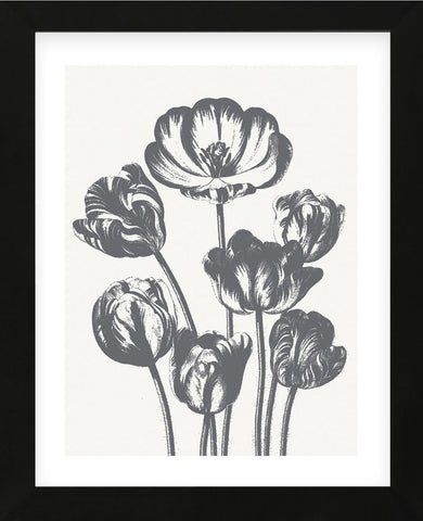 Tulips (Ivory & Gray) (Framed) -  Botanical Series - McGaw Graphics