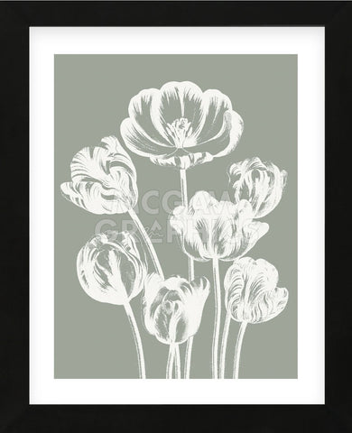 Tulips (Sage & Ivory) (Framed) -  Botanical Series - McGaw Graphics