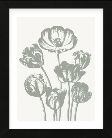 Tulips (Ivory & Sage) (Framed) -  Botanical Series - McGaw Graphics