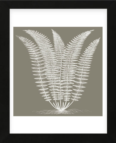 Fern (Burlap & Ivory) (Framed) -  Botanical Series - McGaw Graphics