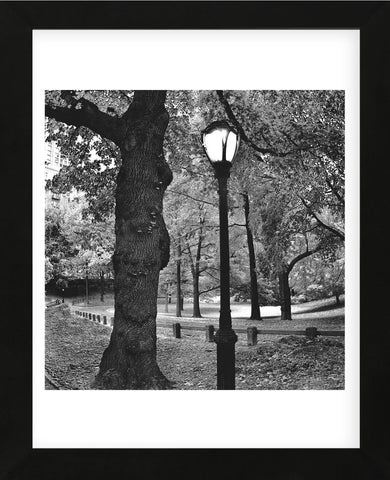 A Light in Central Park  (Framed) -  Erin Clark - McGaw Graphics