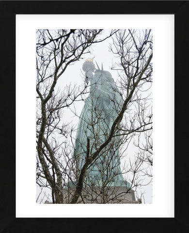Lady Liberty  (Framed) -  Erin Clark - McGaw Graphics