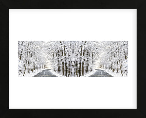 Erin Clark - Two Roads Diverged in a Snowy Wood